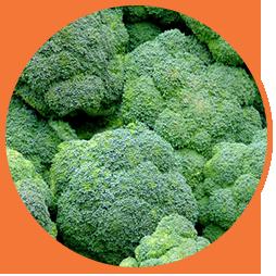 Три ключевых витамина группы В